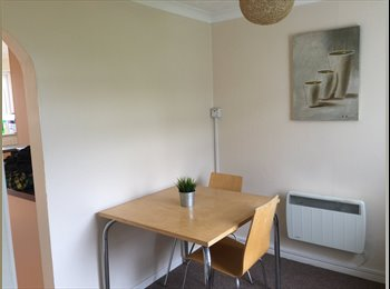 EasyRoommate UK - Great Room near The University in Southampton - Bassett, Southampton - £400 pcm