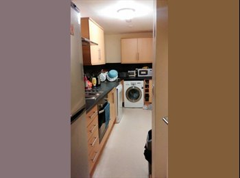 2 Rooms available on Mount Pleasant 2016/17