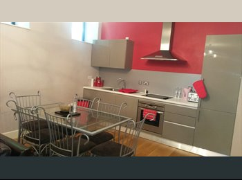 EasyRoommate UK - 2 bed apartment fully furnished £800pcm - Newcastle City Centre, Newcastle upon Tyne - £800 pcm