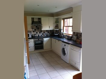 EasyRoommate UK - Double bedroom with ensuite in professional house  - Poringland, Norwich and South Norfolk - £346 pcm