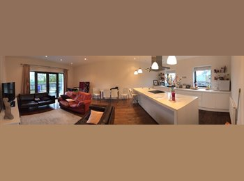 EasyRoommate UK - Large double room in Clapham / Battersea - Battersea, London - £827 pcm