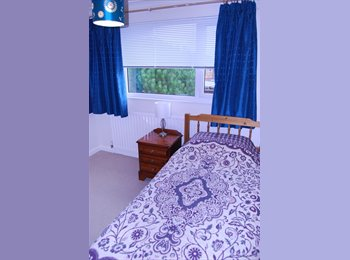 EasyRoommate UK - Furnished double room for single occupancy - Taunton, South Somerset - £85 pcm