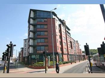 EasyRoommate UK - Student Accommodation Available At The Trigon - nether Edge, Sheffield - £396 pcm