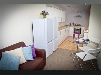 House Share in Bristol