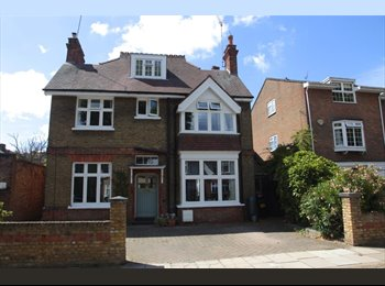 EasyRoommate UK - House Share in Twickenham - Twickenham, London - £800 pcm