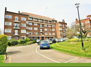 EasyRoommate UK - Very clean and quiet flat  - Hendon, London - £650 pcm