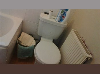 EasyRoommate UK - Double room in a flat  - Bath, Bath and NE Somerset - £400 pcm