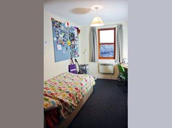 EasyRoommate UK - Ensuite room in Unite Student residence on King Street - Old Aberdeen, Aberdeen - £618 pcm