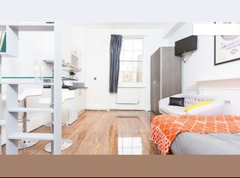Stunning Studio near Hyde Park and Queensway/Bayswater tube...