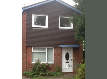 EasyRoommate UK - Double room  - Stafford, Stafford - £480 pcm