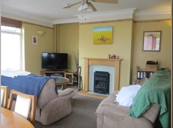 EasyRoommate UK - Large double room in spacious flat - St Judes, Plymouth - £300 pcm