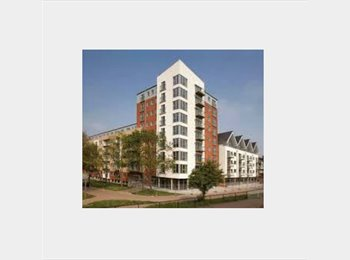 EasyRoommate UK - Modern 2 bedroom flat for rent - Basildon, Basildon - £575 pcm