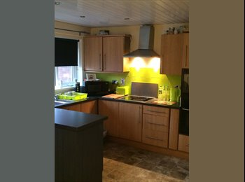 EasyRoommate UK - SHORT TERM AND LONG TERM STAYS AVAILABLE - Blackstaff Stop, Belfast - £240 pcm