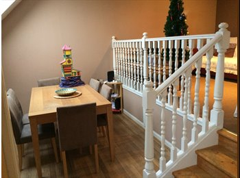 EasyRoommate UK - Double room to rent - £325 pcm - Dundee, Dundee - £325 pcm