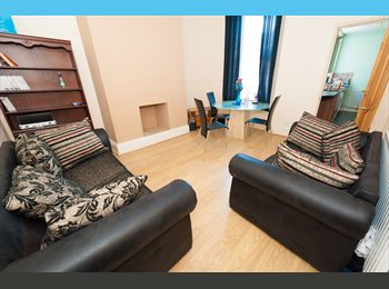 5 BEDROOM PROPERTY TO LET IN FENHAM | GORGEOUS LOUNGE |...