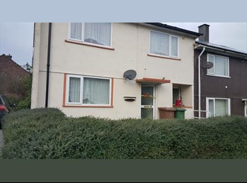 EasyRoommate UK - Room to rent in house - Derriford, Plymouth - £390 pcm