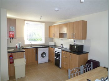 Single Room - Woodston off Oundle Road