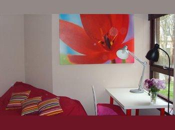 Bright Room in Luxury Flat