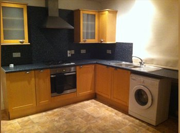 EasyRoommate UK - FABULOUS VERY LARGE 3 BEDROOMED DUPLEX APARTMENT - Canton, Cardiff - £800 pcm