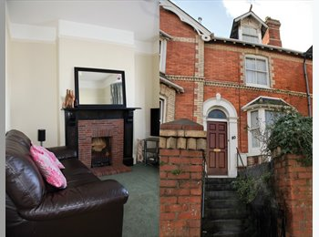 EasyRoommate UK - 4 Bedroom Victorian Houseshare in Newton Abbot - www.housesharedevon.co.uk - Newton Abbot, Newton Abbot - £440 pcm