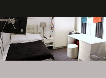 EasyRoommate UK - Stylish Rooms Next to University College London - East Finchley, London - £1,213 pcm