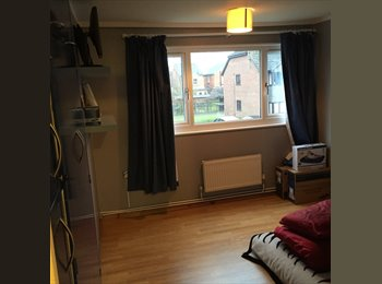 EasyRoommate UK - Newly decorated spacious house in town center - Basingstoke, Basingstoke and Deane - £600 pcm