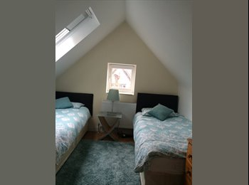 Clean and fresh  twin room is now available.