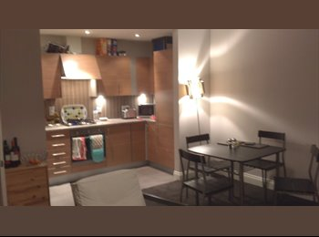 EasyRoommate UK - PhD student looking for a student flatmate for city centre flat - Dundee, Dundee - £338 pcm
