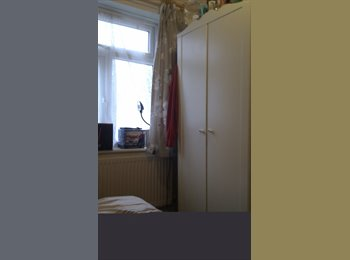 Single room available for a professional person