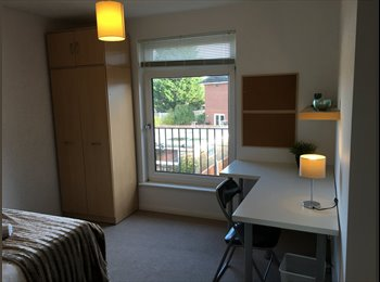 EasyRoommate UK - Extra large Double Room in Chelmsford Houseshare - Chelmsford, Chelmsford - £550 pcm