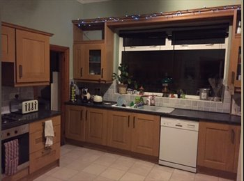 Large Double room available in large ground floor flat