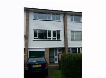 EasyRoommate UK - double room to rent in quite modern house - Sydenham, London - £550 pcm