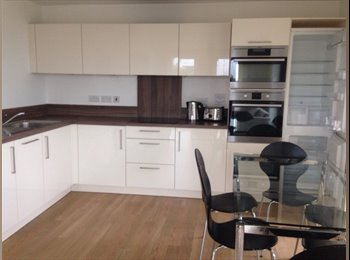 EasyRoommate UK - Luxurious flat at an awesome price !  - Bow, London - £750 pcm