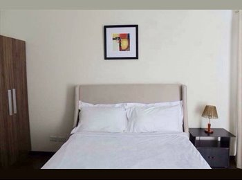 Beautiful One Bedroom Apartment Available for rent