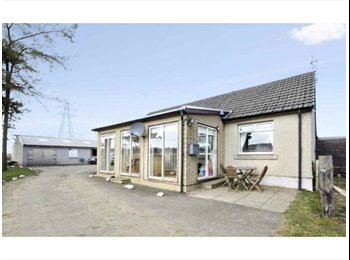 Room to rent in rural equestrian property  with livery...