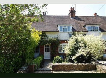 EasyRoommate UK - Large Room, Quiet St, Garden & St Parking, (great reviews on Airbnb) - Haslemere, Waverley - £650 pcm