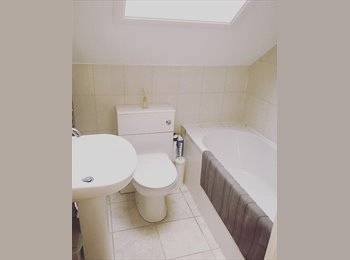 Nice spacious double room in a flat share.