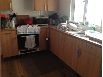 EasyRoommate UK - Large double room - Mutley, Plymouth - £360 pcm