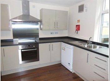 Room to Rent Ecclesall/Sheffield Hallam £92 p/w