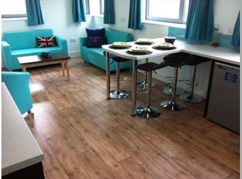 Ensuite single room in student accommodation