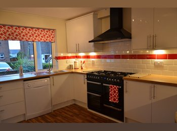 EasyRoommate UK - A Beautiful Room with Own Bathroom. Only 5 Min Walk  to L&D Hospital, Luton, Lewsey Farm - £640 pcm