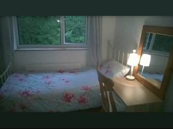 Single furnished room available now for working female with...
