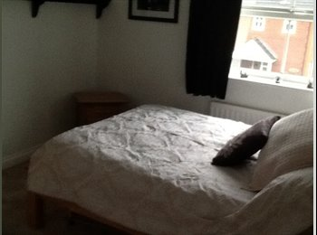 EasyRoommate UK - Excellent double room to let - Taunton, South Somerset - £400 pcm