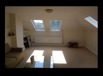 EasyRoommate UK - Cute room in a FABULOUS Split-Level apartment!! - Willesden, London - £700 pcm