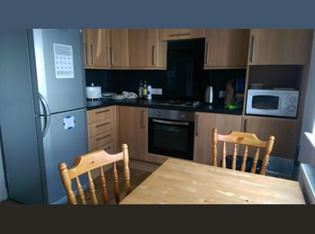 EasyRoommate UK - Lovely en suite double bedroom in stunning house located off town centre. All bills included., Aberystwyth - £475 pcm