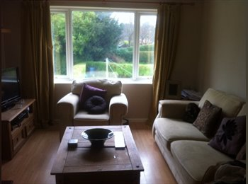 Double room to rent in madeley