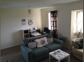 EasyRoommate UK - Single/double room - Elstow, Bedford - £400 pcm