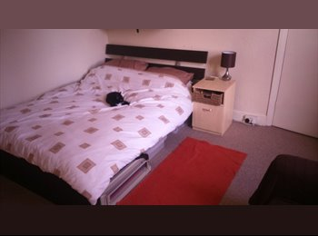Double Room in Excellent Location