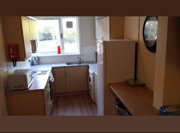 3 available double rooms in garthdee,  2 minute walk from...