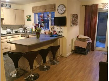 EasyRoommate UK - Double room with large private bathroom. Mon -fri only  - Blunsdon St Andrew, Swindon - £400 pcm